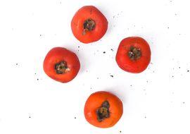 caqui-rama-organico