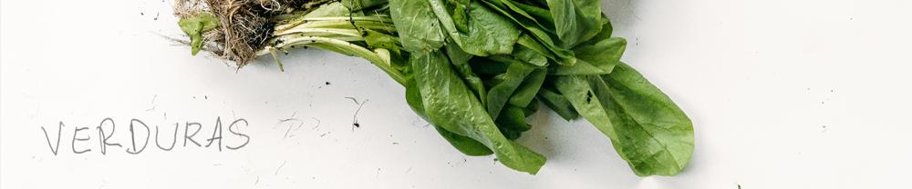 banner_verduras_8