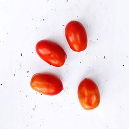 Tomate-Salada