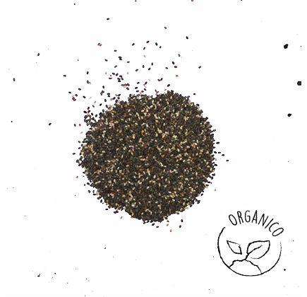 Chia-Organica-100g---Raizs