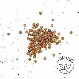 Grao-de-Bico-Organico-250g---Raizs