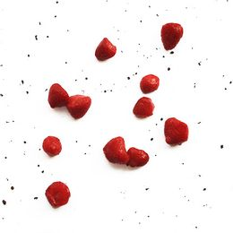 Morango-Organico-Congelado-500g---Fruta-Fina