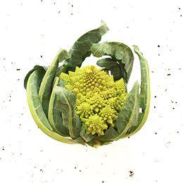 Brocolis-Romanesco-Organico-Unidade---Raizs