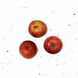 Maca-Gala-Organica-500g---Raizs