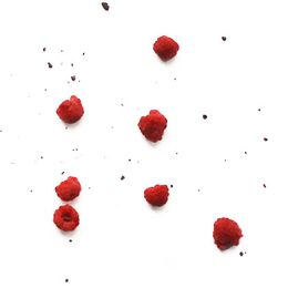 Framboesa-Organica-Congelada---Fruta-Fina