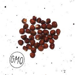 Avela-Organica-100g---Raizs