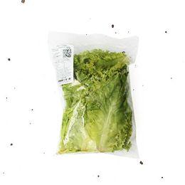 Alface-Crespa-Organica-Higienizada-150g---Raizs