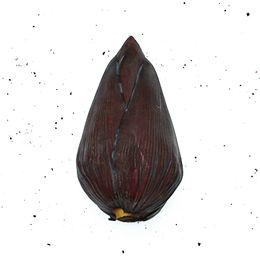 umbigo-de-banana