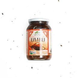 Compota-de-Umbu-Organico-630g---Gravetero