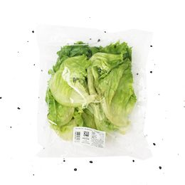 Alface-Americana-Organica-Higienizada-170g---Raizs