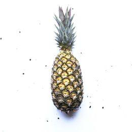Abacaxi-Organico-Unidade---Raizs