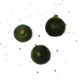 Abobrinha-Redonda-Verde-Escura--600g---700g----Raizs