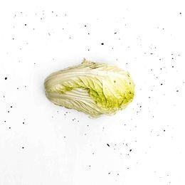 Acelga-Organica-Unidade---Raizs
