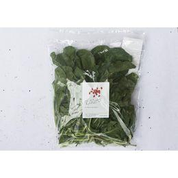 Agriao-Organico-Higienizado-150g---Raizs