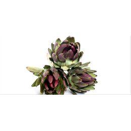 Alcachofra-Organica-Unidade---Raizs