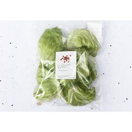 Alface-Americana-Organica-Higienizada-150g---Raizs