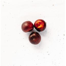 Ameixa-Organica--500g---600g----Raizs