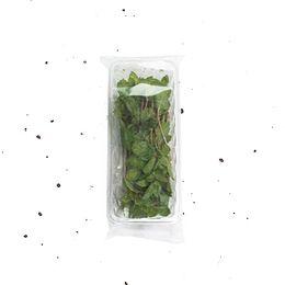 Hortela-Organico-Higienizado-20g---Raizs