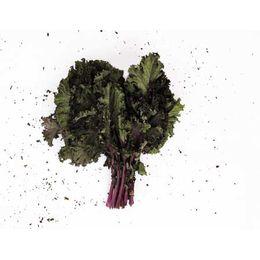 Kale-Crespo-Organico-Maco---Raizs