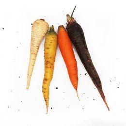 Mix-de-Cenouras-Coloridas--500g---700g----Raizs