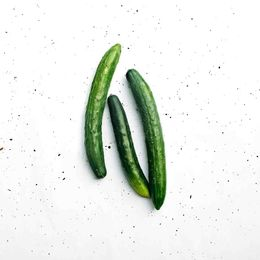 Pepino-Japones-Organico--500g---600g----Raizs