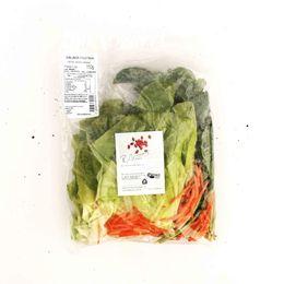 Salada-Festiva-Organica-Higienizada---Raizs