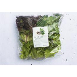 Salada-Mista-Organica-Higienizada-150g---Raizs