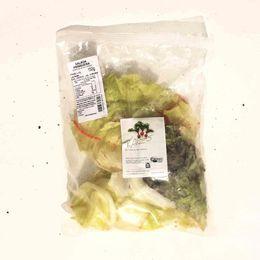 Salada-Primavera-Organica-Higienizada---Raizs