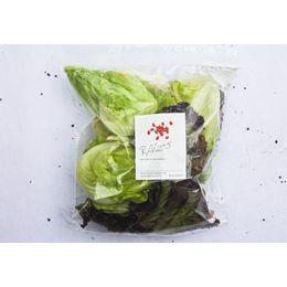 Salada-Todo-Dia-Organica-Higienizada-150g---Raizs