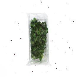 Salsa-Organica-Higienizada-25g---Raizs
