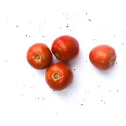 Tomate-Salada-Organico--500g---600g----Raizs