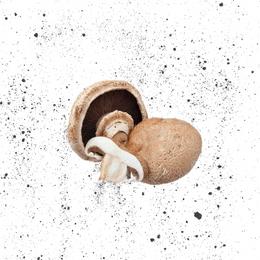 cogumelo-Portobello
